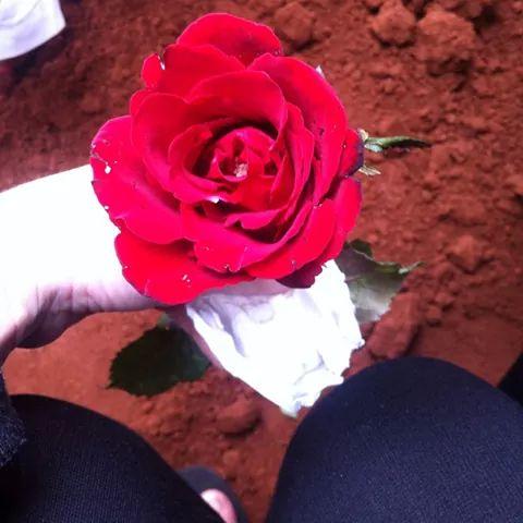 Rest in Peace- On Angels Wings You Were Taken Away