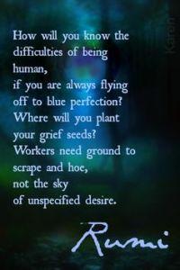 Rumi Perfection