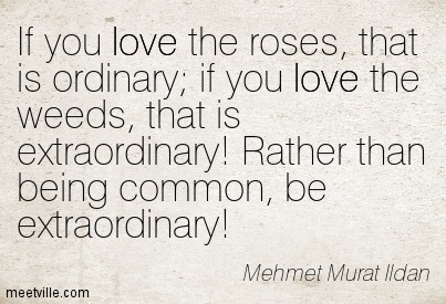 Quotation-Mehmet-Murat-Ildan-love-Meetville-Quotes-40837
